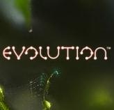 Free Spins på Evolution hos Vinnarum på söndag
