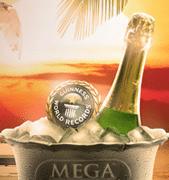 Mega Fortune jackpot hos Betsson
