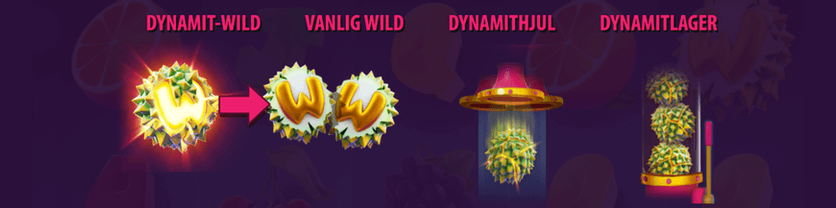Durian Dynamote slot