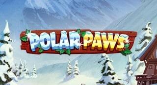 Polar Paws kommer snart