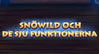 Omslagsbild Snöwild och de 7 funktionerna