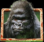 Gorilla Kingdom bonus