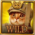 Feline Fury bonus